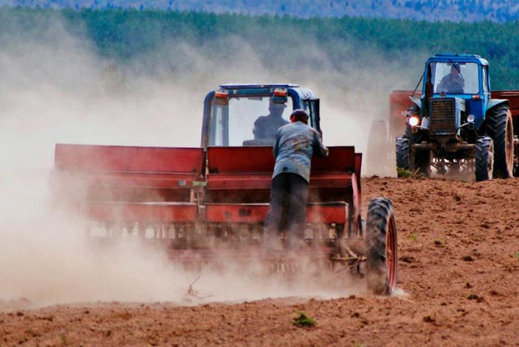 развитие сельских территорий